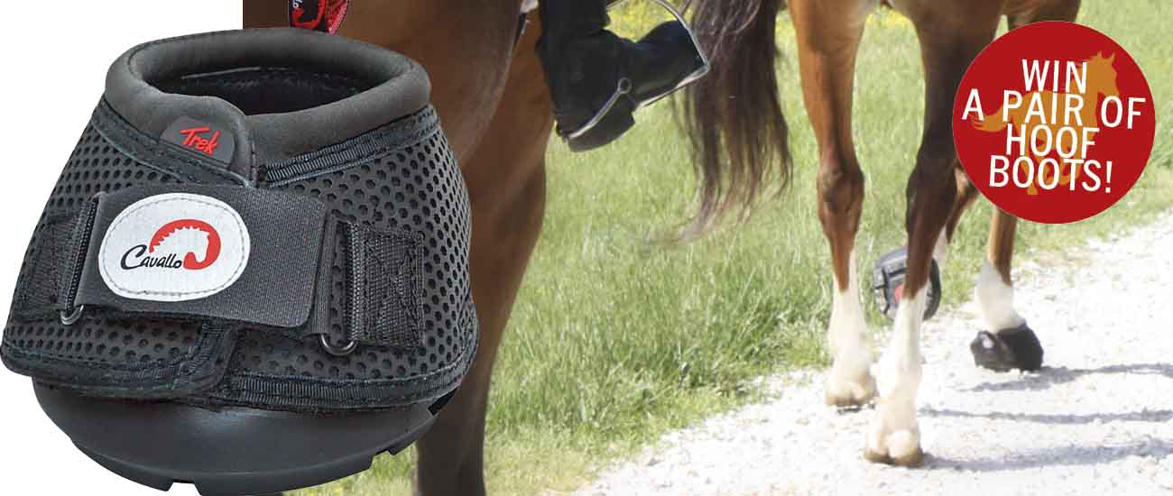 Hoof Boot Competition